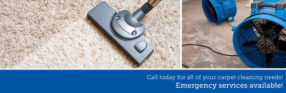 Carpet Cleaning Mena AR